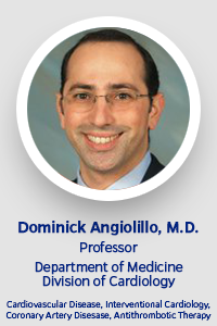 faculty-template-angiolillo