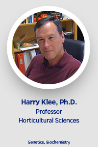 faculty-template-klee